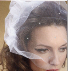 Tulle Birdcage face Veil with Crystals