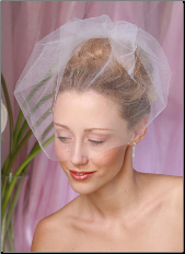 Cage Bridal Veil with Rhinestones