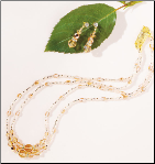 Multi Beads in Champagne & Gold Two Row Necklace & Earrings