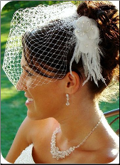 Elegant Feather Hair Fascinator plus Removeable Cage