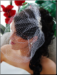 Pearl & Rhinestone Comb with Attached Cage Veil