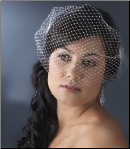 Bird Cage Veil with Side Combs