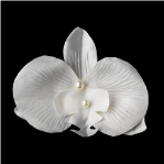 Ivory or white Pearls and Soft Petals Hair Clip