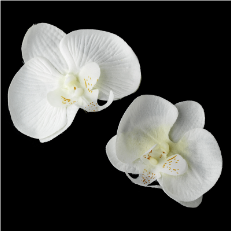 Natural Looking Twin Orchid Bridal Flower Hair Clips- set of 2 flowers