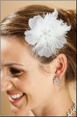 Feather and Crystal hair accessory