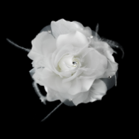 Bridal Flower Feather Hair Accessory in White or Ivory